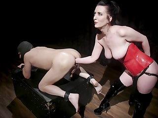 Ballbusting Goddess Cherry Torn